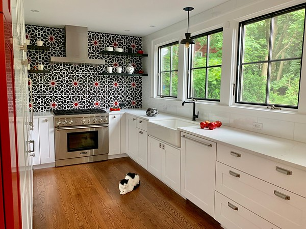 The black & white kitchen and cat
