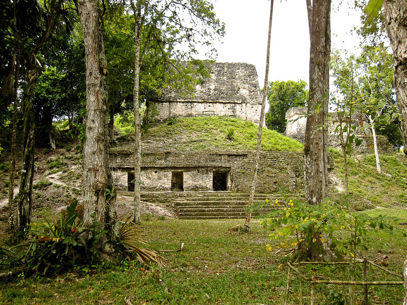 ruins covered by jungle in tikal