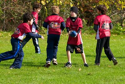 Cardinals Fall 2011