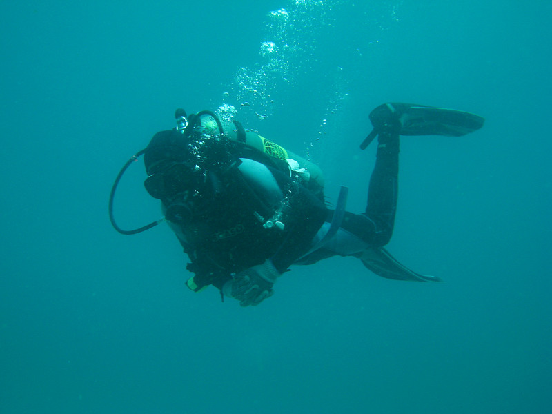 Diving in the Galapagos (304 of 392)