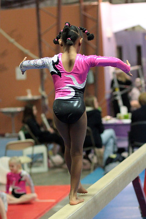 Session 5 : Sunday 1/26/14 : Premier Gymnastics