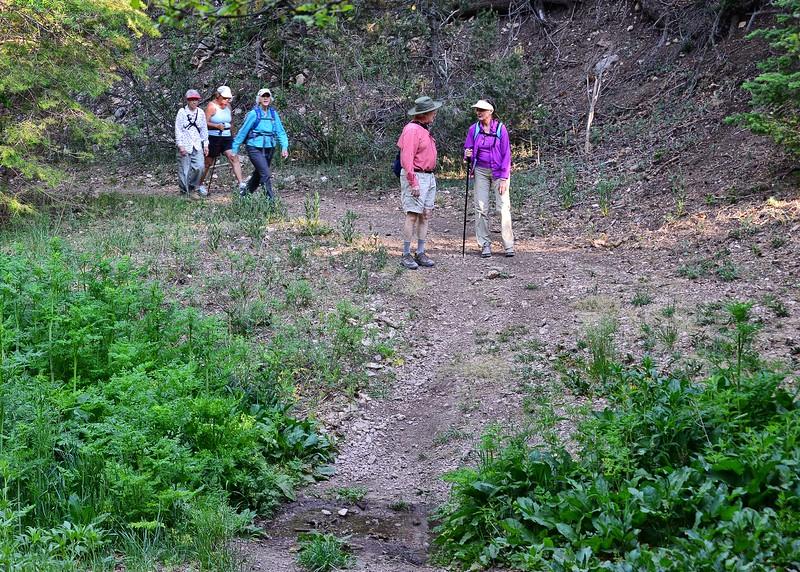 NEA_2493-7x5-Hikers at stream.jpg