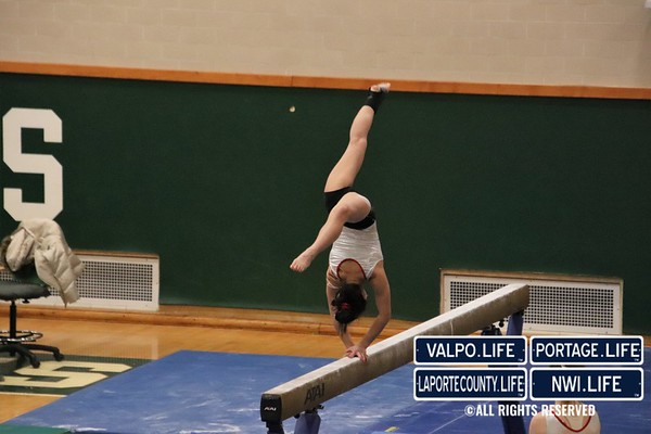 Girls Gymnastics Regionals 2019