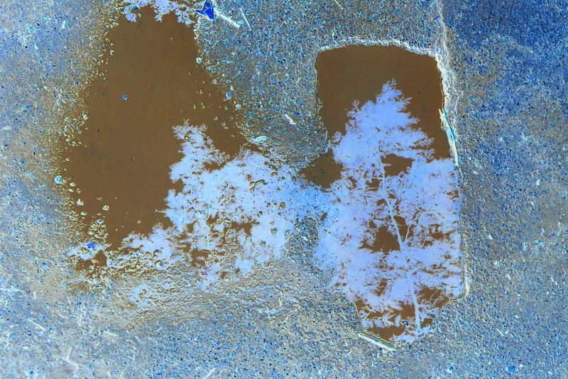 Double Puddle~0149-1.