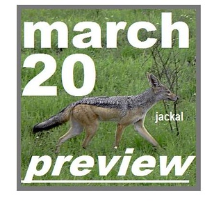 20 MARCH preview