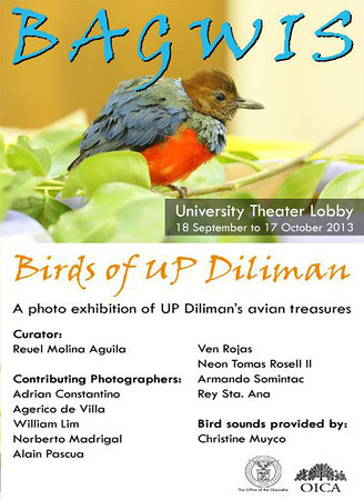 Bagwis: Birds of UP Diliman Exhibit