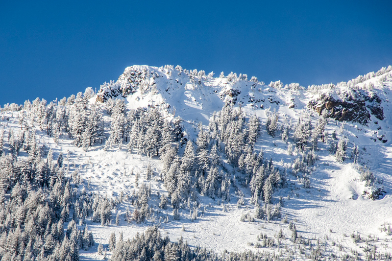 December 27 - Mammoth mountain (in small part), a few hours after a snowstorm.jpg
