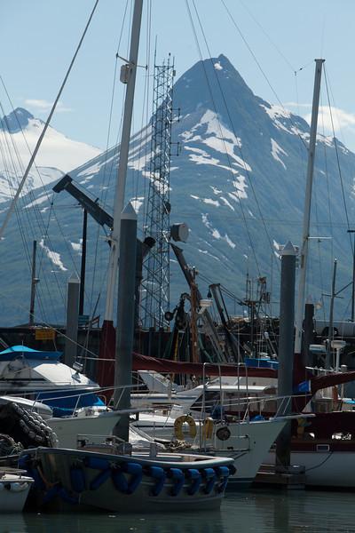 Alaska Copper River-0611.jpg