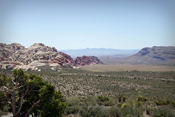 Vegas Trip 2010