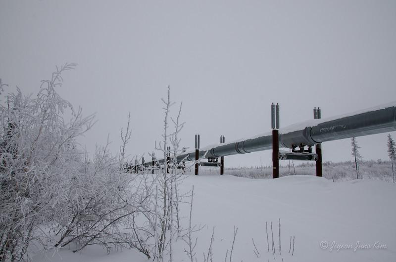 USA-Alaska-Arctic-Circle-2475.jpg