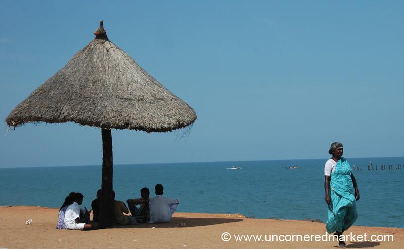 Indian Blues - Pondicherry, India