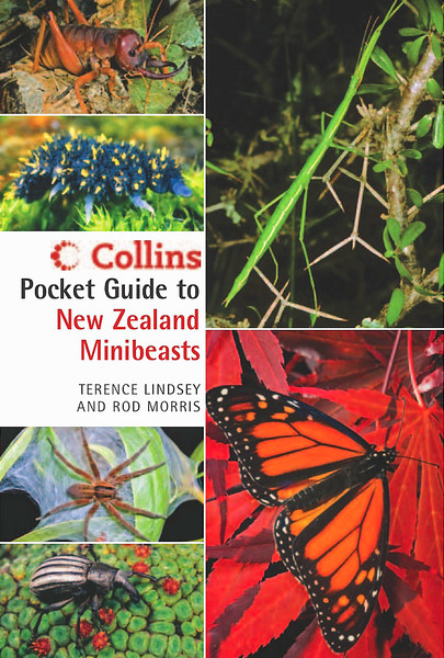 A practical field guide to 120 species of common NZ invertebrates, from earthworms to butterflies and beetles. RRP NZ $29.95 ISBN 978-1-7755-4019-9 (Sorry, now out of print)