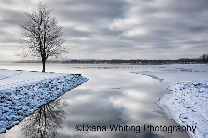 North Inlet in Owasco Lake in Winter