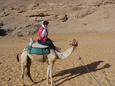 Egypt: Fellow Travelers on Camels