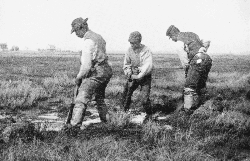 PSM_V66_D290_Manual_ditch_digging_on_the_shrewsbury_river_marshes_1904.png