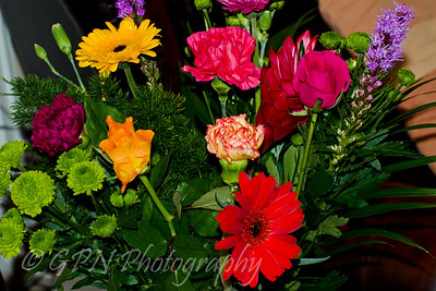 Indoor Flowers 2010