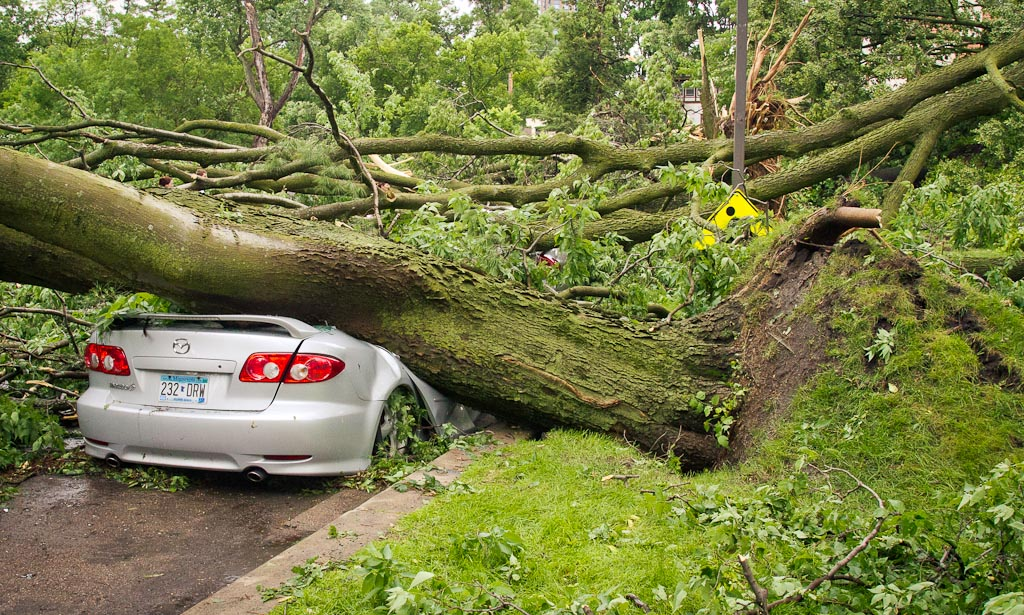 . A car is crushed by a tree in Minneapolis. (Photo: Ryan Coleman)