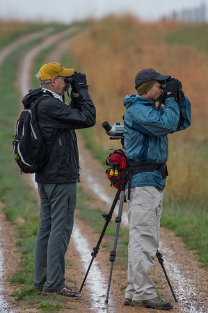 2015 May Birding Expedition