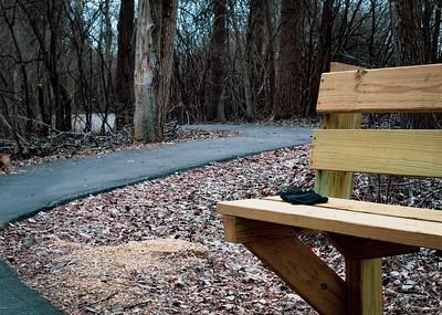 04-03-2019--trail