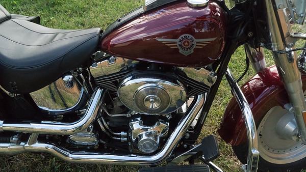 2002 Harley Davidson FLSTFI