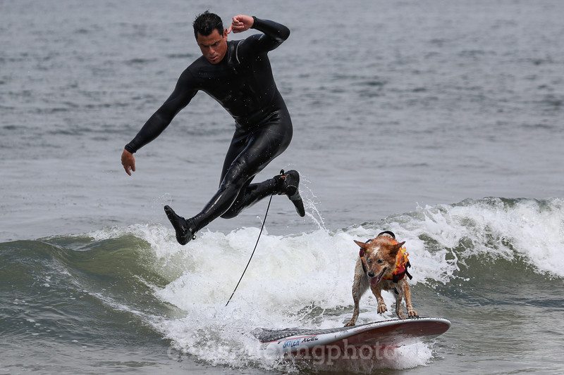 8/5/17: Skyler the Surf Dog and her human, Homer Henard , at the 2017 World Dog Surfing Championships at Pacifica State Beach in Pacifica, Ca by Chris M. Leung