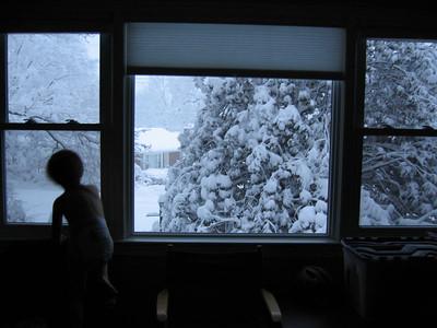 Snow Storm - Feb 2006