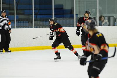 Game 3 - Michgan Ice Hawks vs Livonia Rangers