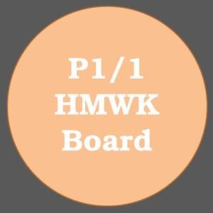 P1/1 HMWK