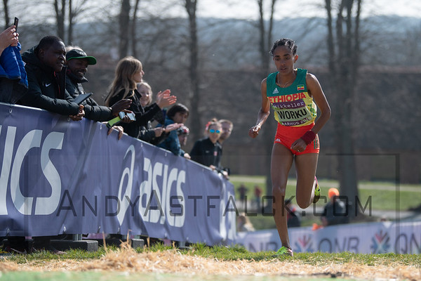 2019 March 29 - World Cross Country Champs Aarhus Denmark