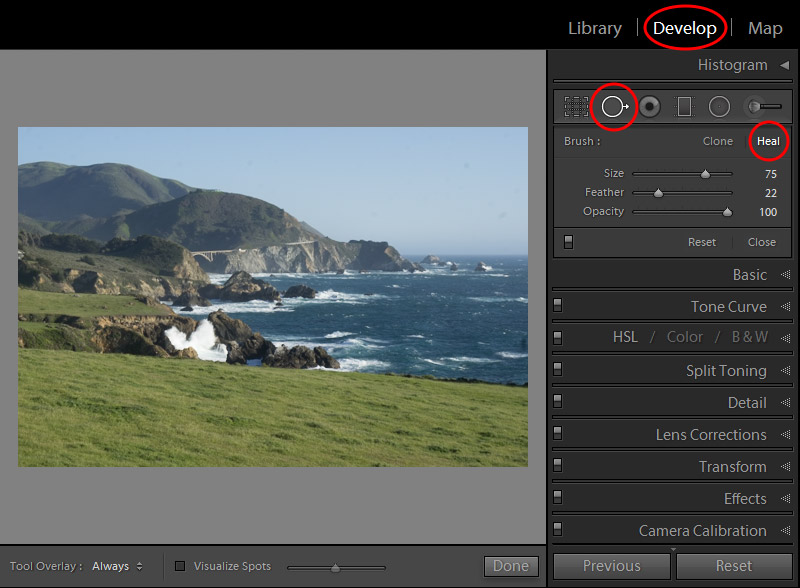 Lightroom Spot Removal Tool