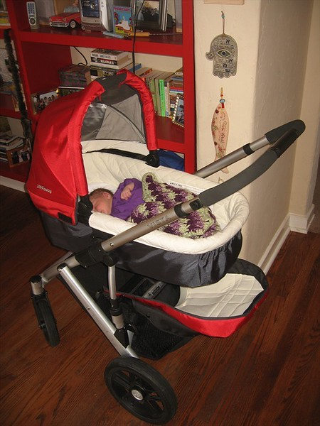 Only the best for Shai: the UPPAbaby 2010 VISTA stroller
