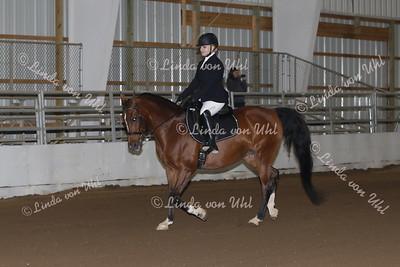 Class #124 Arabian SHUS Dressage Type Open