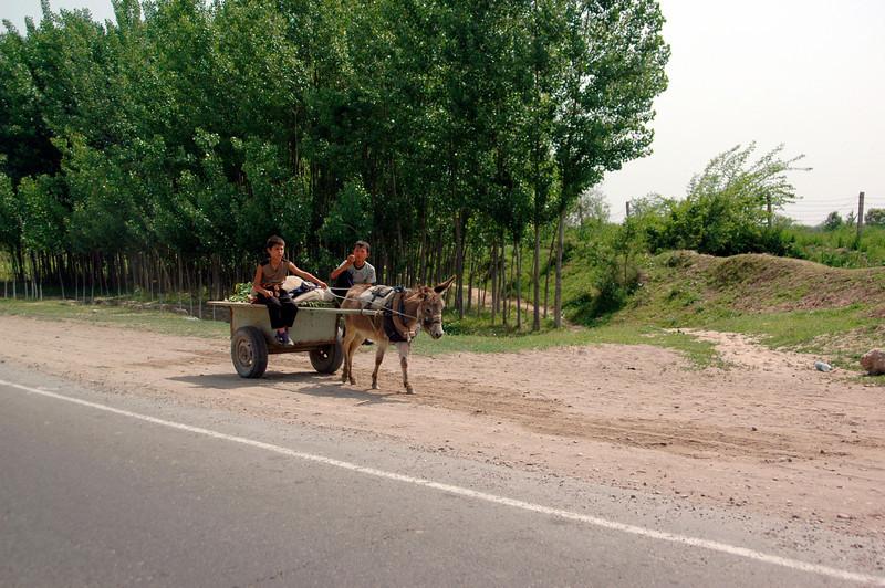 050427 3865 Uzbekistan - Samarkand - Road Trip to Tashkent _D _E _I ~E ~L.JPG