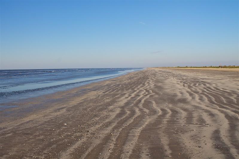 Sea Rim State Park Texas