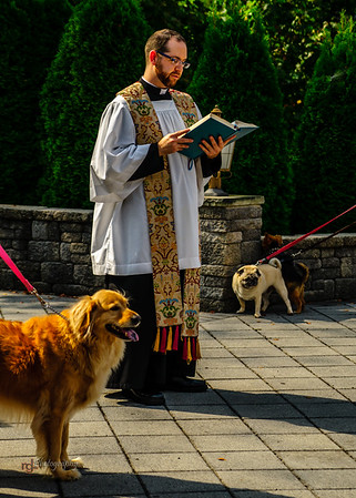 2013 - infant jesus blessing of pets