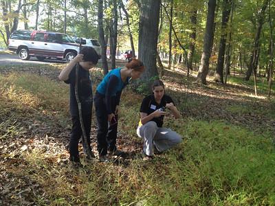 10.5.13 Wavyleaf Basketgrass Search Workshop