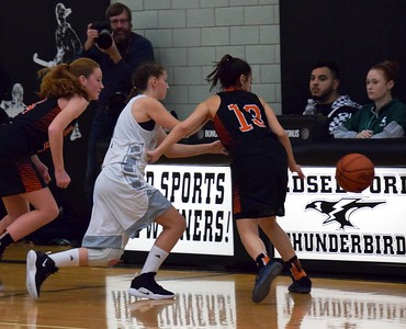 HS Sports - Edsel Ford vs. Dearborn Girls Basketball
