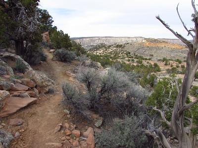 Gallup-North Hogback Trail Hike  4-1-19