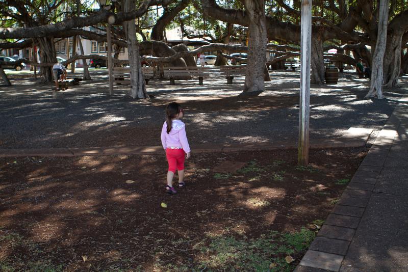 Hawaii2012-1262.jpg