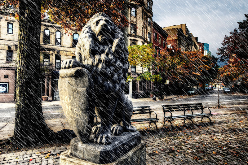 The Lion of St. Mark's