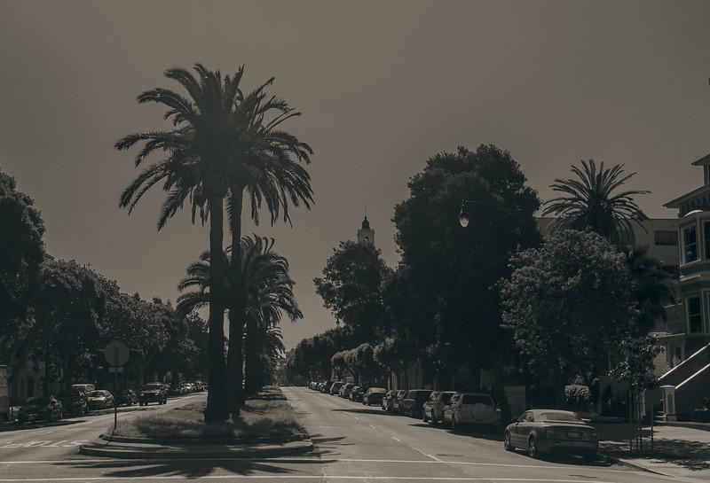 Dolores Street.jpg