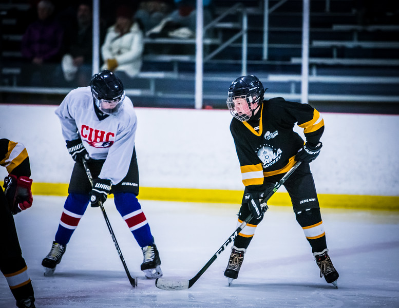 Bruins2-108.jpg