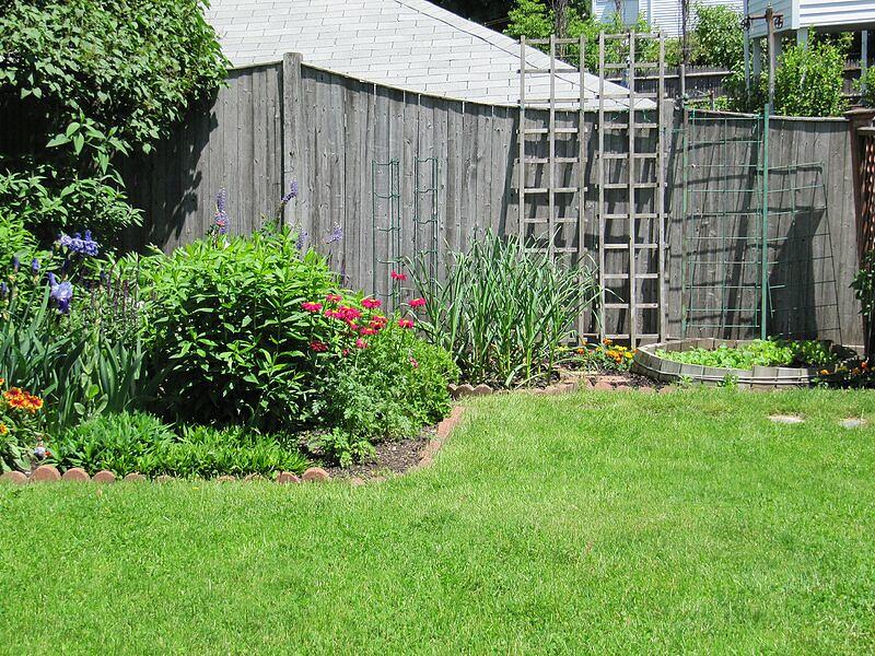 garden-2009-05-0682_std.jpg