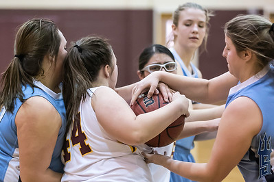 Piedmont Panthers vs. Sun Valley Spartans - 02/09/18