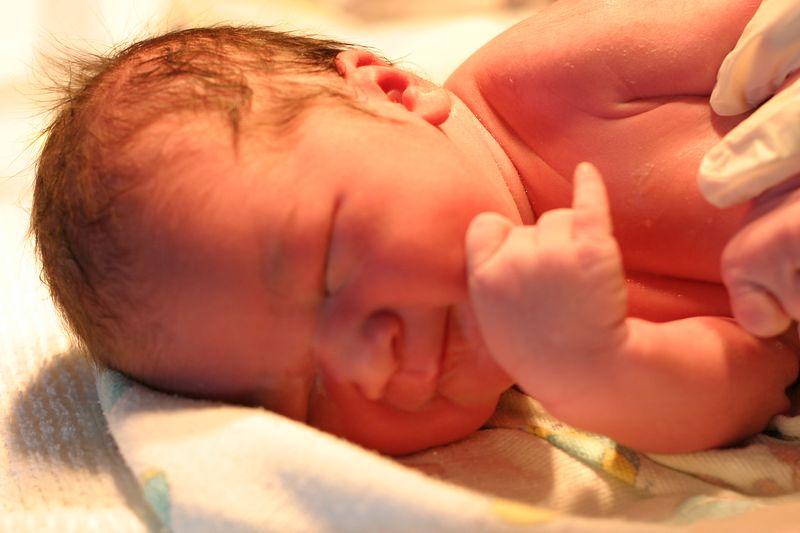 Baby Zoe 100.JPG