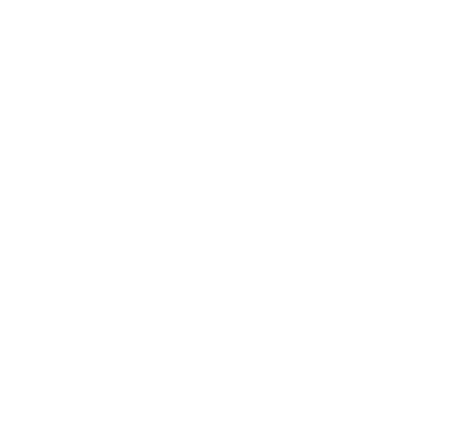 Zia Sun Symbol - White.png