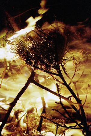 2000-03-18 Venture Camp at Barnswood