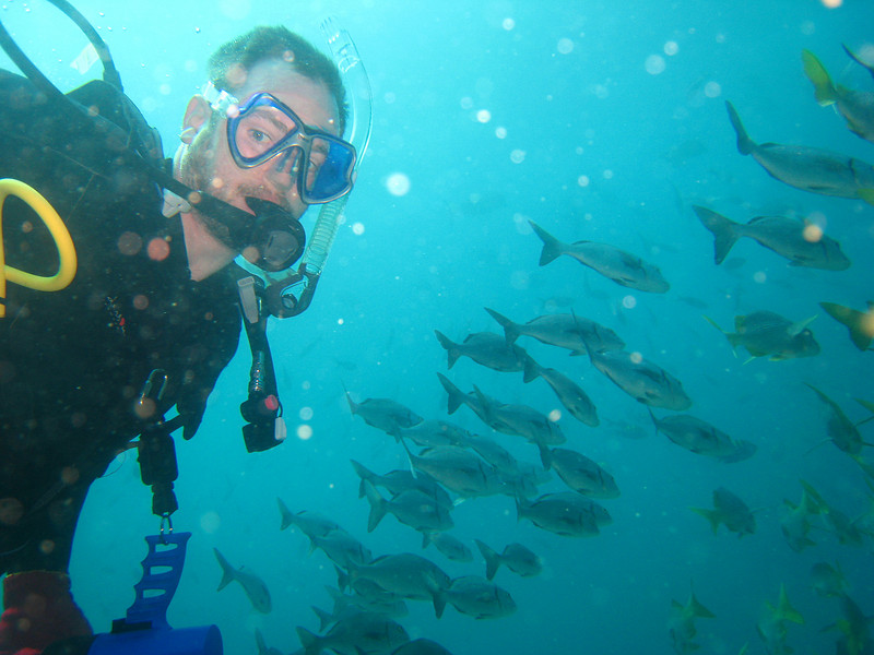 Diving in the Galapagos (100 of 392)