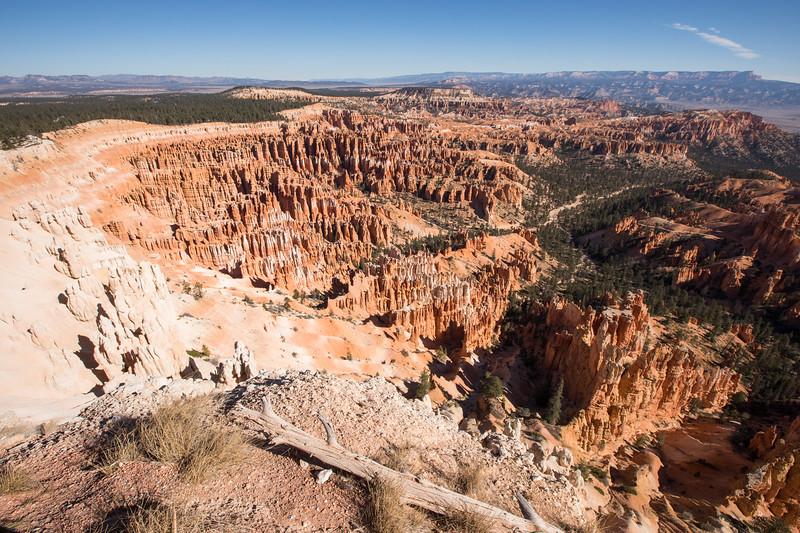 WVWS_Bryce Canyon-3383.jpg