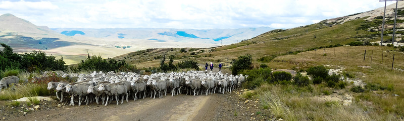 Eastern Cape Traffic Jam